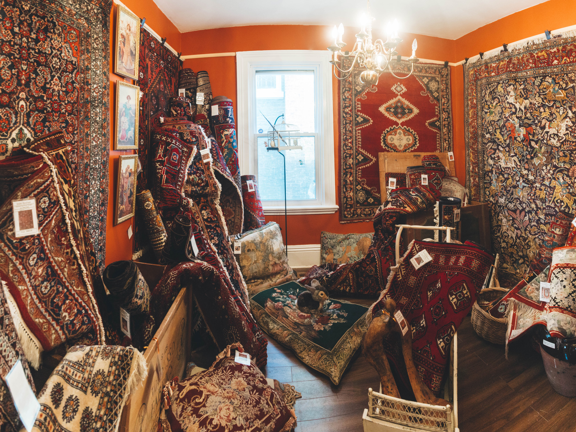 The magical rug room